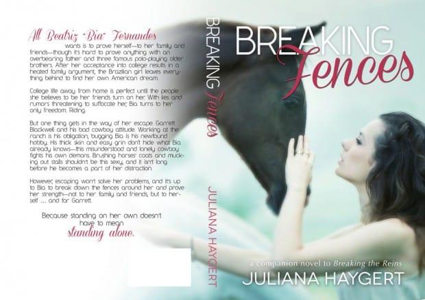 BreakingFences - paperback